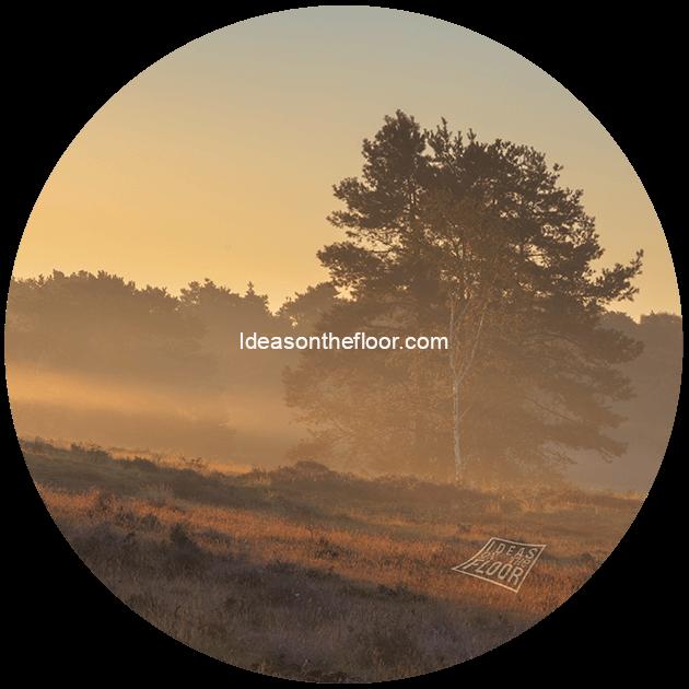 Behangcirkel-heide-landschap-bestelnummer-647320