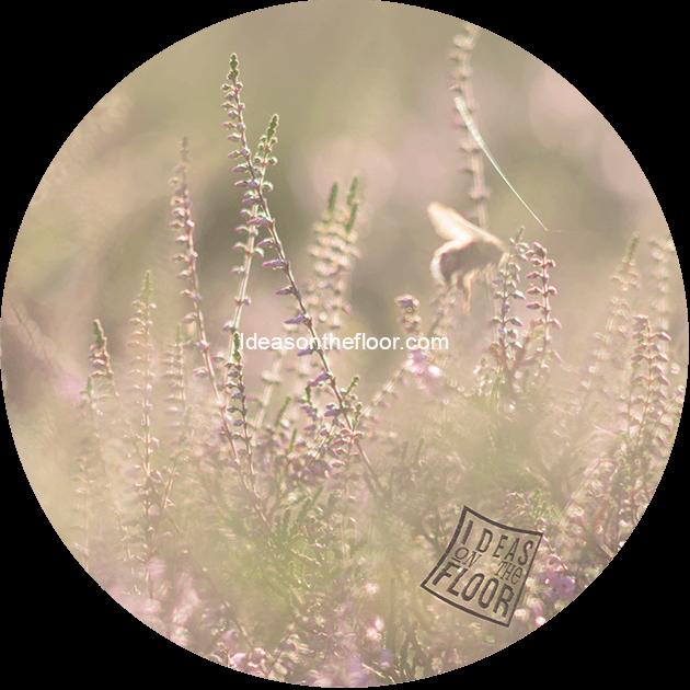 behangcirkel- heide-bloemen-hommel-bestelnummer-656620