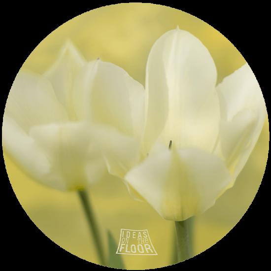 004021-muurcirkel-hexagon-bloem-tulp