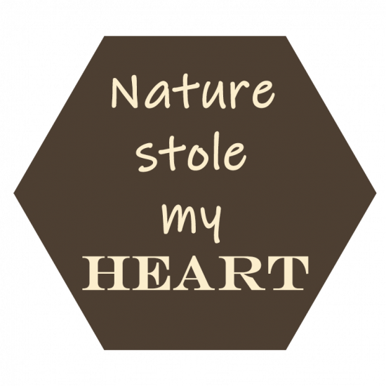Text-Nature-stole-my-heart-capuchino