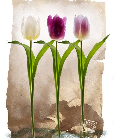 Doek-met-tulpen-wit