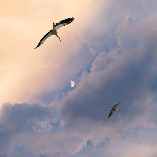Fotografische-kunst-augmented-reality-wolkenlucht-maan-ooievaars-titel-freedom