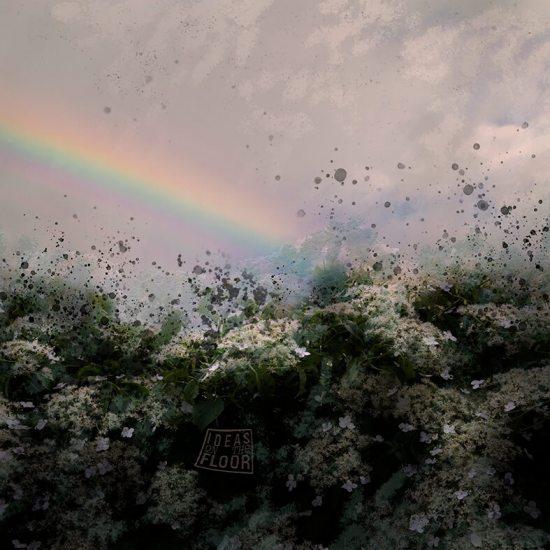 Fotografische-kunst-Hortensia-met-regenboog-3-Titel-Promises