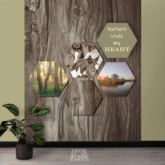"""Hexagon combinatieset """"Outdoors"""" excl fotowand Wood"""