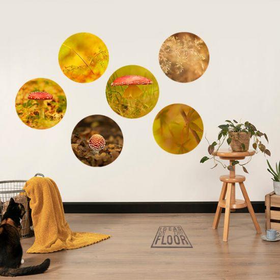 Behangcirkel-autumn-vibes-2-in-woonkamer-met-kat