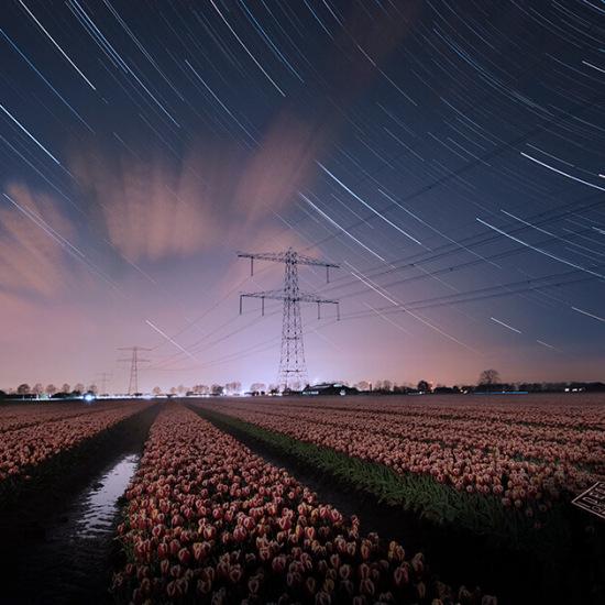 224521-Startrail-tulpenveld-Zevenaar-nachtfoto