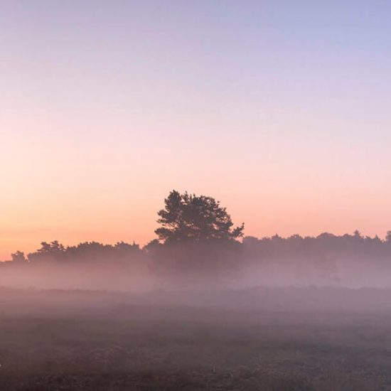 635721-panorama-sunrise-grondmist-heideveld-scaled