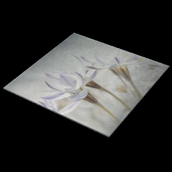 aluminiumbord-bovenaanzicht-met-witte-bloemen-465620