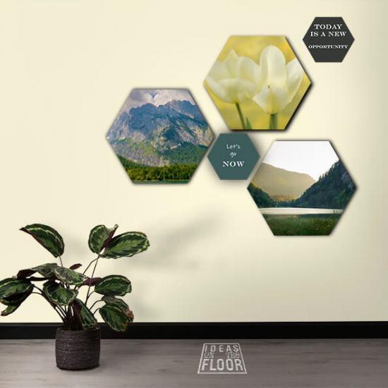 DSC7184b-lege-wand-met-plant-serie-hexagon-combinatieset-lets-go