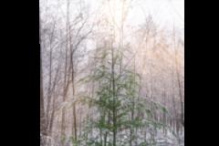 Textielposter Kerst/Textielposter Kerstboom Wanddecoratie Kerst