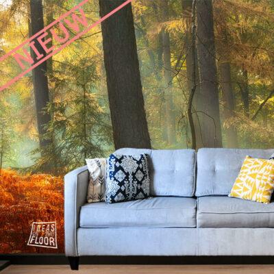 fotowand-bomen-fotomuur-herfstbos-fotobehang-herftsbos-fotobehang-herfstkleuren-fotobehang -bomen
